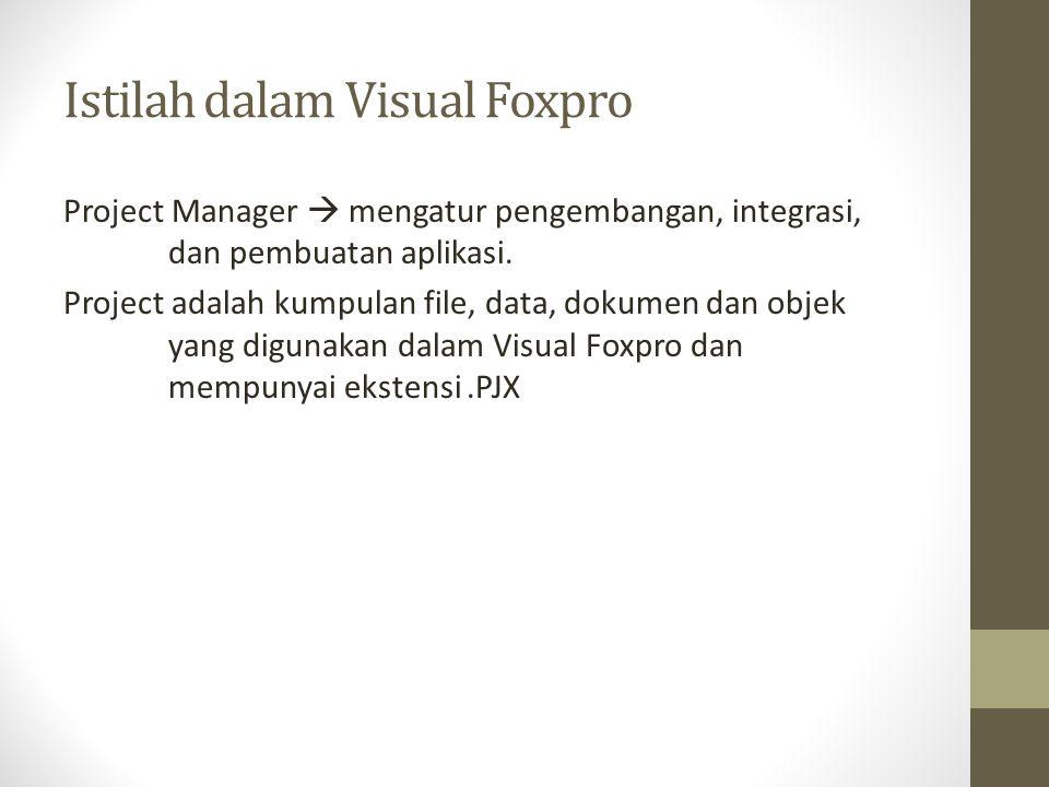 Istilah dalam Visual Foxpro