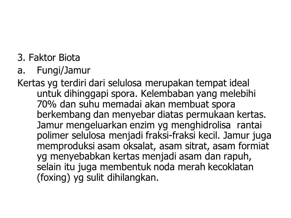 3. Faktor Biota Fungi/Jamur.