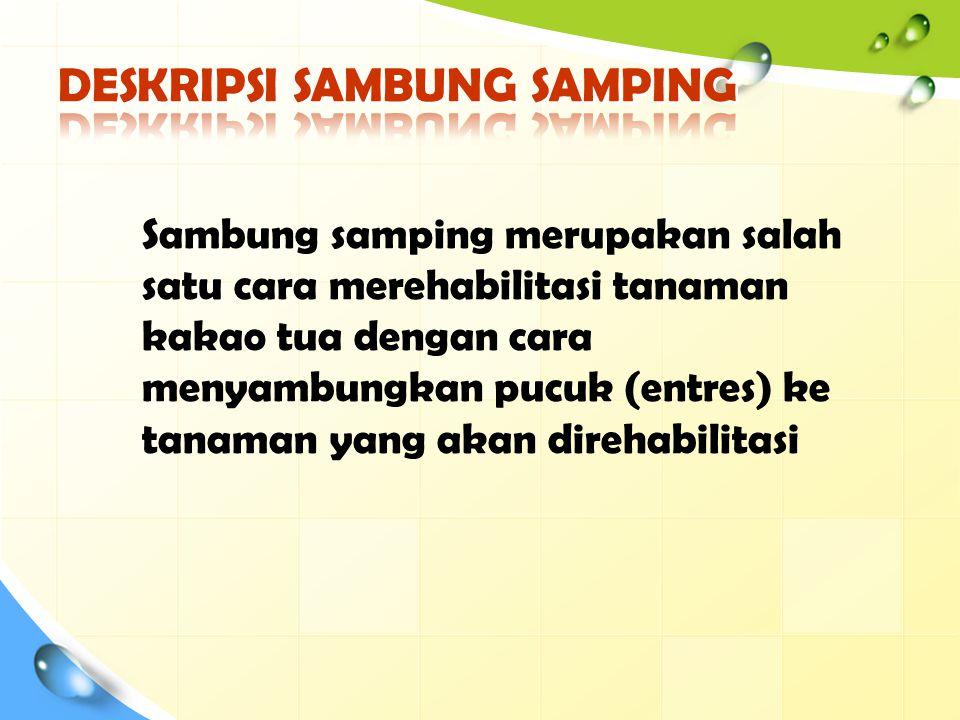 DESKRIPSI SAMBUNG SAMPING