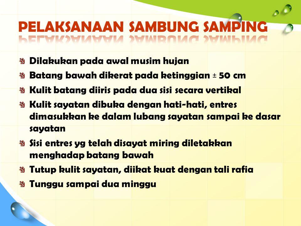 PELAKSANAAN SAMBUNG SAMPING
