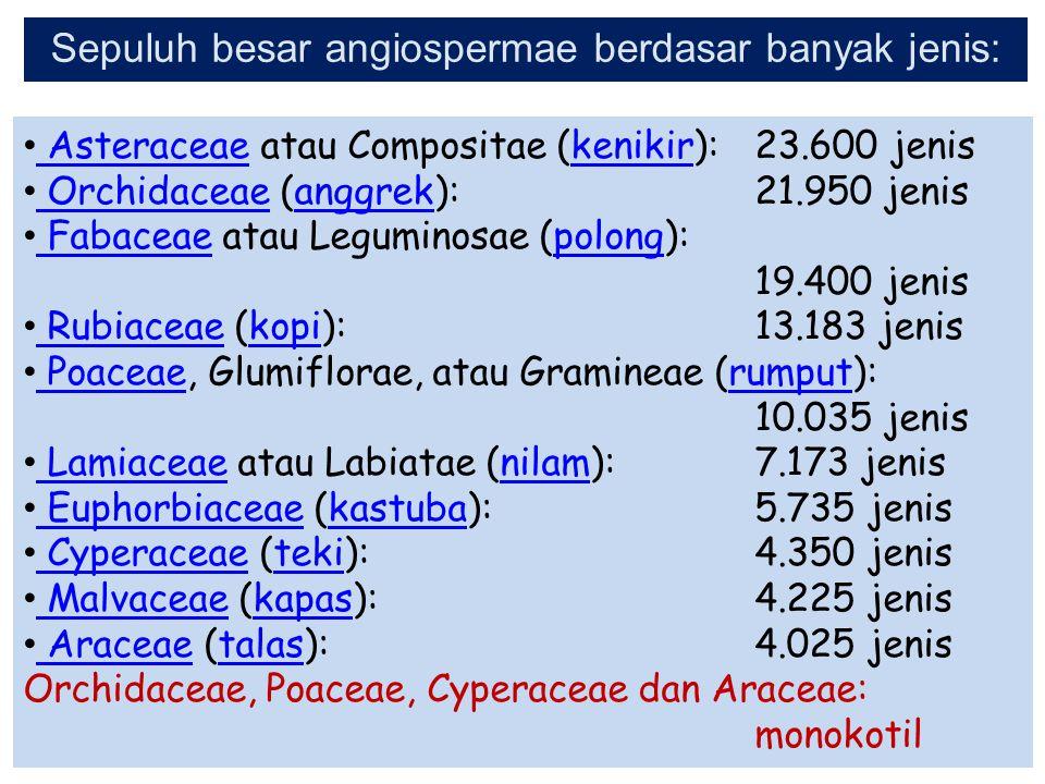 Sepuluh besar angiospermae berdasar banyak jenis: