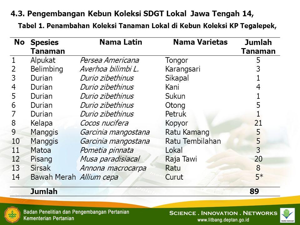 No Nama Latin Nama Varietas Jumlah Tanaman