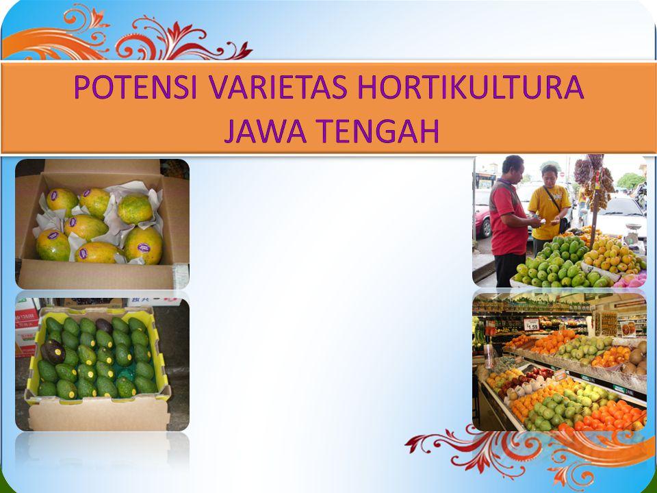 POTENSI VARIETAS HORTIKULTURA JAWA TENGAH