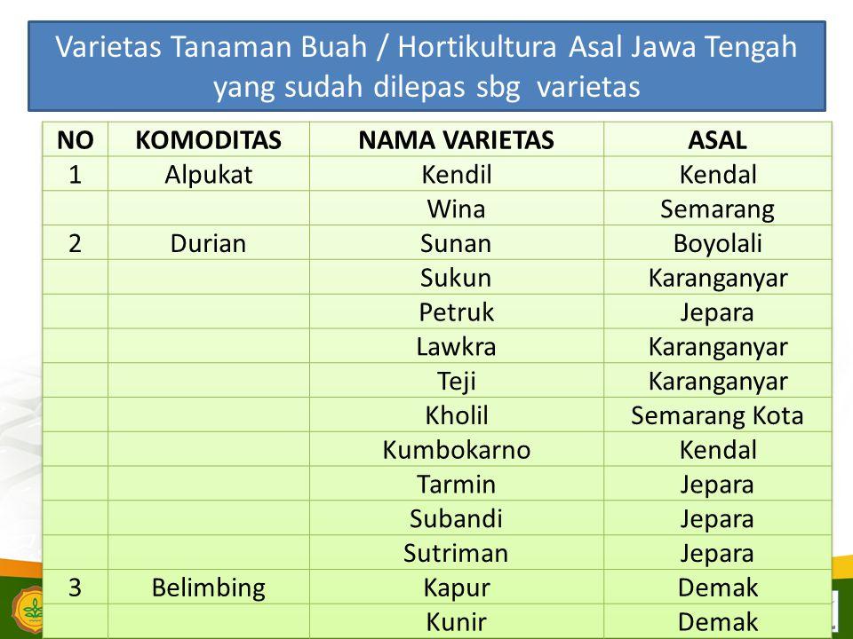 Varietas Tanaman Buah / Hortikultura Asal Jawa Tengah yang sudah dilepas sbg varietas