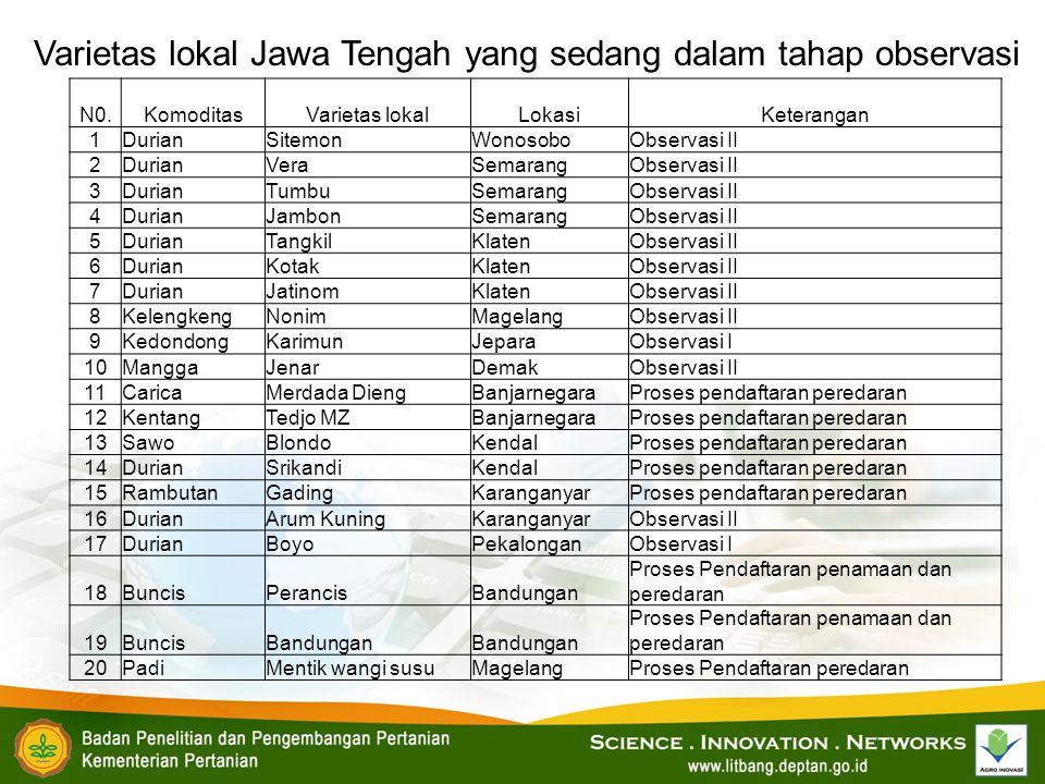 Varietas lokal Jawa Tengah yang sedang dalam tahap observasi