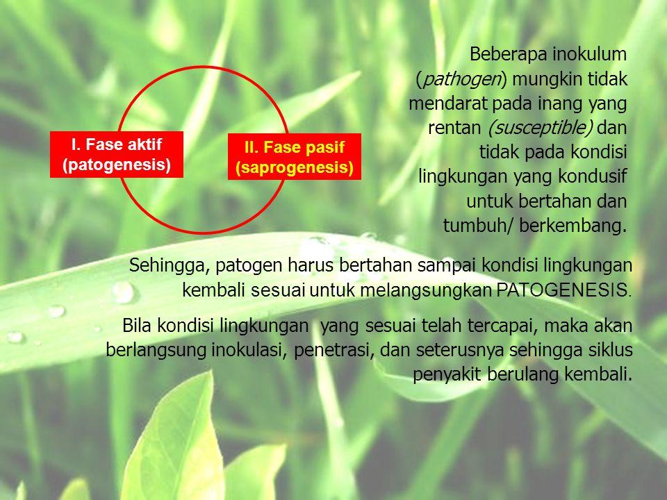 I. Fase aktif (patogenesis) II. Fase pasif (saprogenesis)