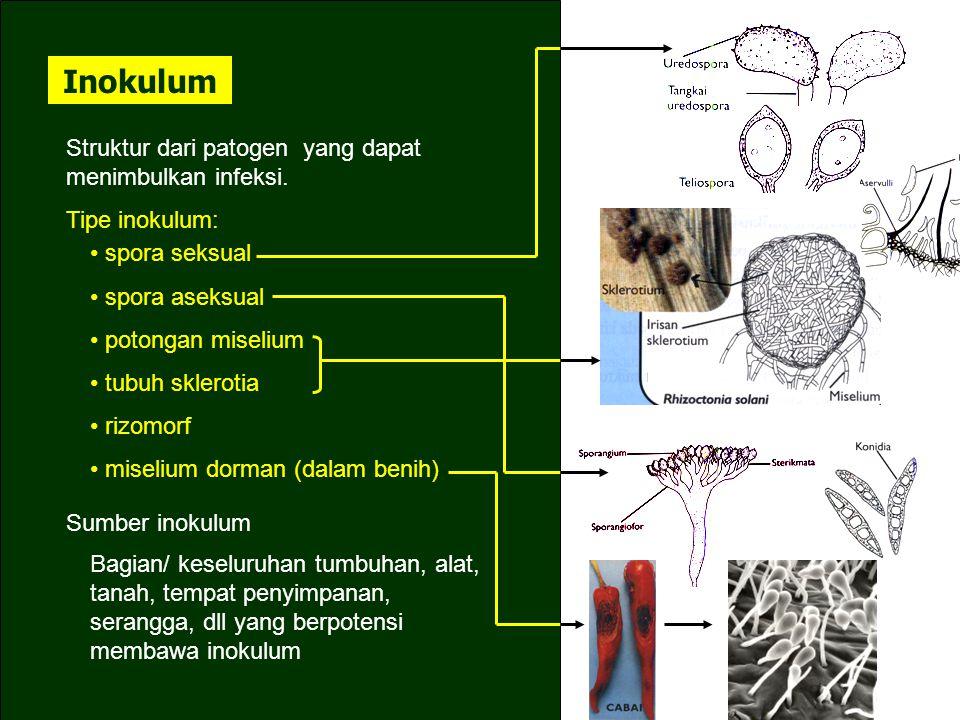 Inokulum Struktur dari patogen yang dapat menimbulkan infeksi.