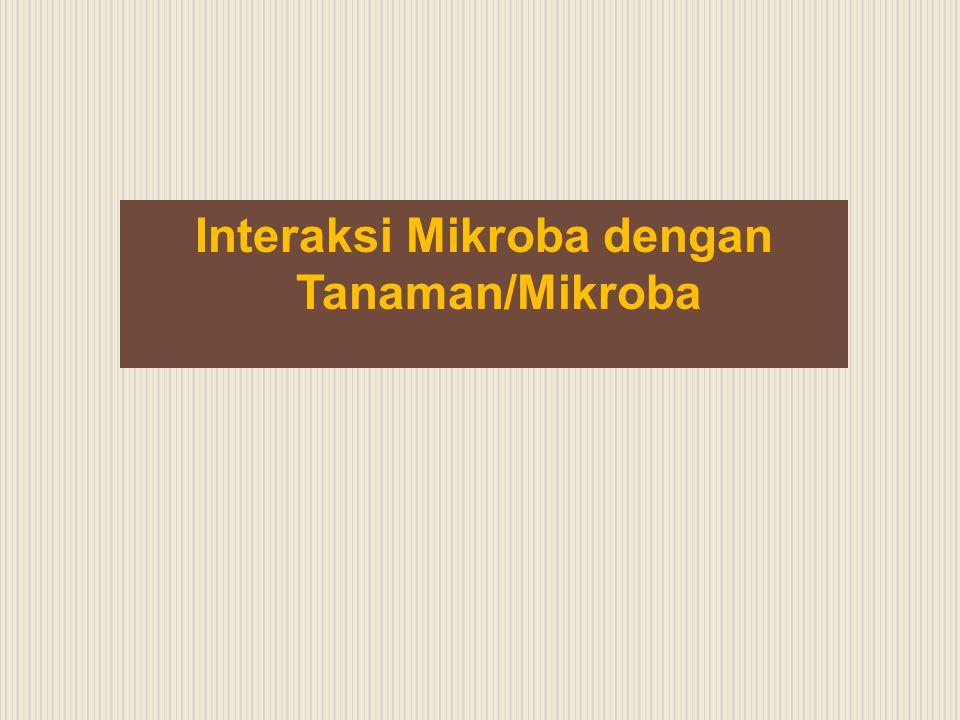 Interaksi Mikroba dengan Tanaman/Mikroba