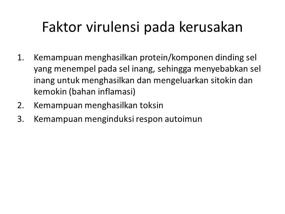 Faktor virulensi pada kerusakan