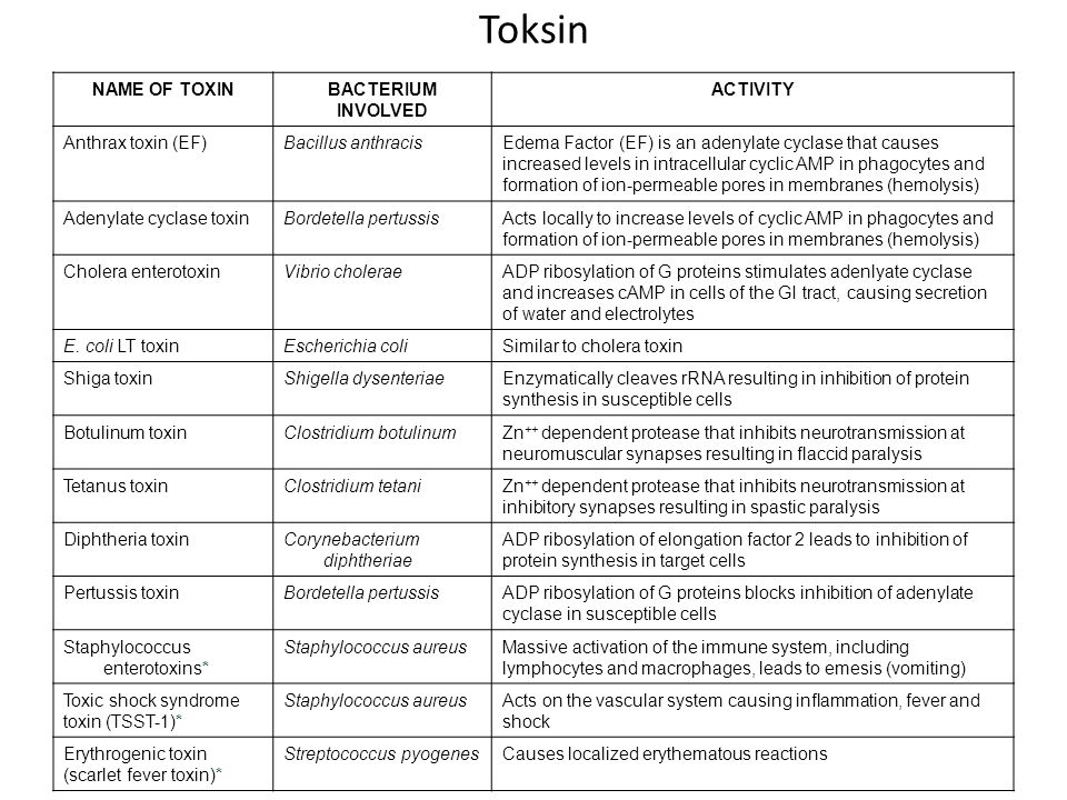 Toksin NAME OF TOXIN BACTERIUM INVOLVED ACTIVITY Anthrax toxin (EF)