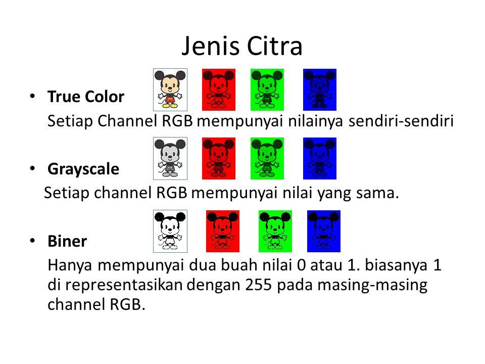 Jenis Citra True Color. Setiap Channel RGB mempunyai nilainya sendiri-sendiri. Grayscale. Setiap channel RGB mempunyai nilai yang sama.