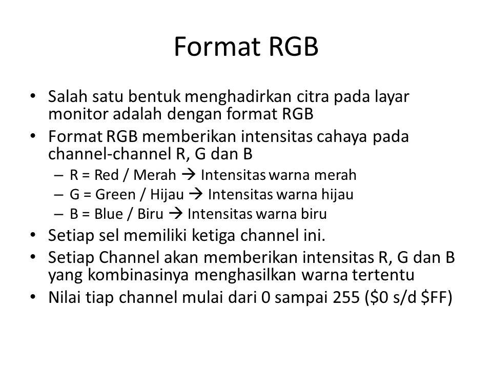Format RGB Salah satu bentuk menghadirkan citra pada layar monitor adalah dengan format RGB.