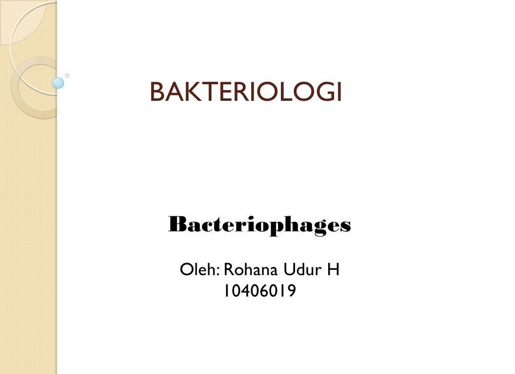 Bacteriophages Oleh: Rohana Udur H 10406019
