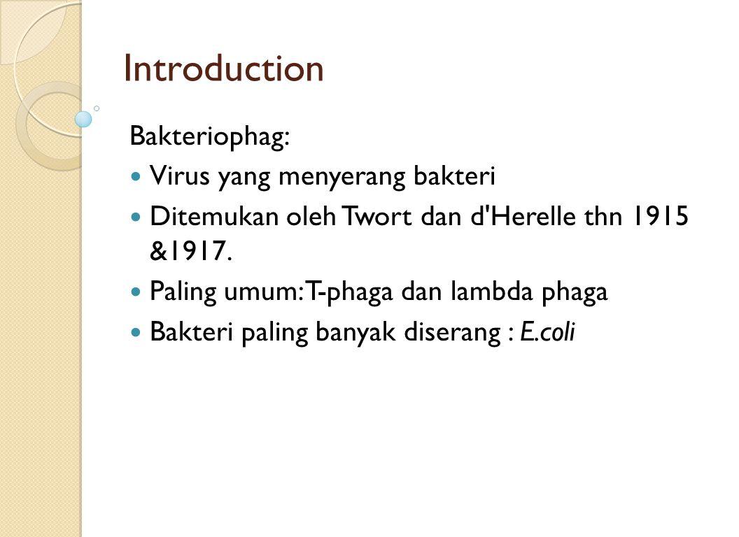 Introduction Bakteriophag: Virus yang menyerang bakteri