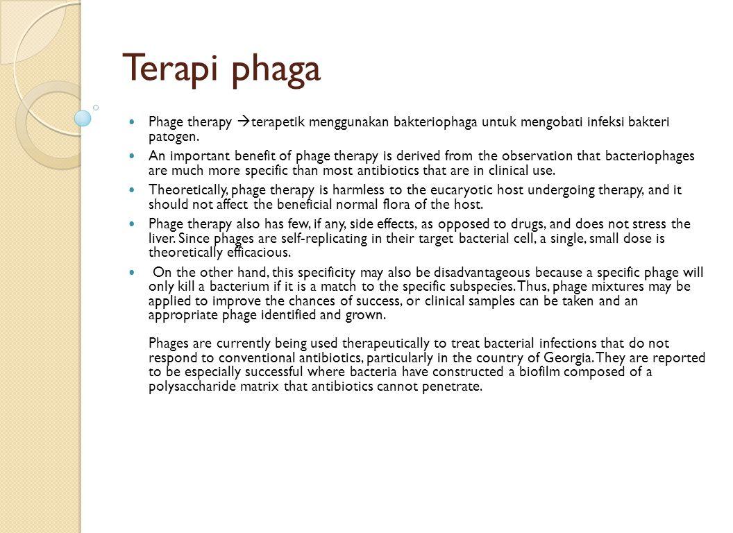 Terapi phaga Phage therapy terapetik menggunakan bakteriophaga untuk mengobati infeksi bakteri patogen.