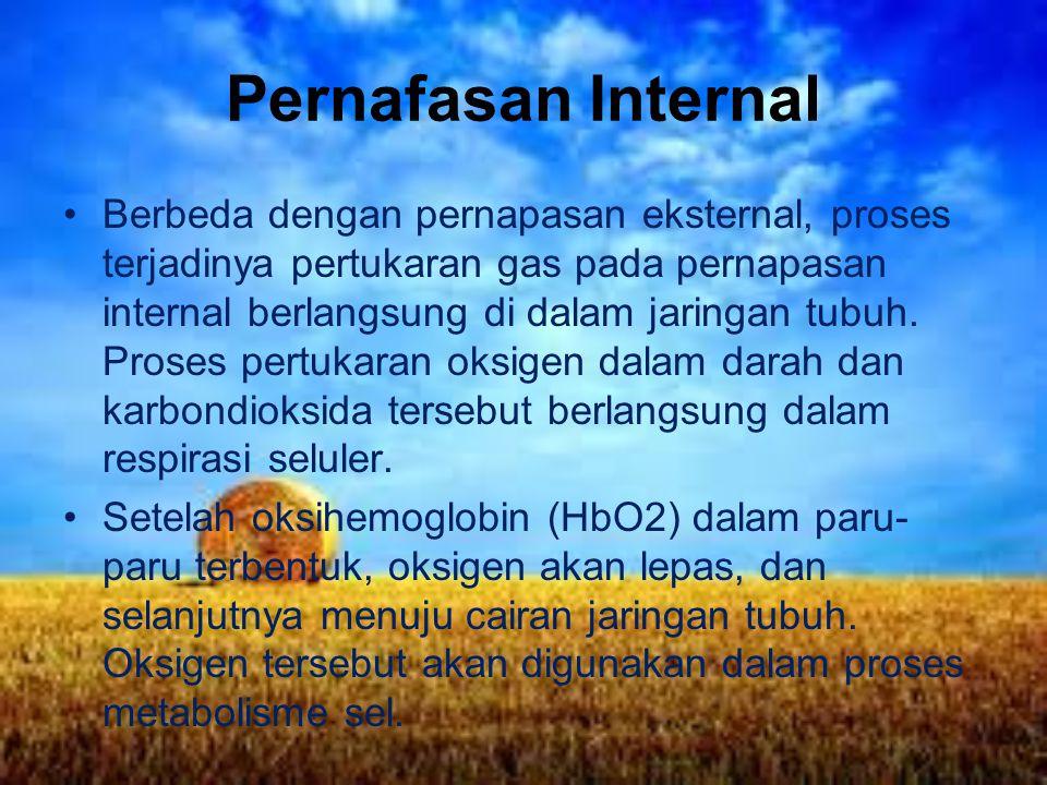 Pernafasan Internal