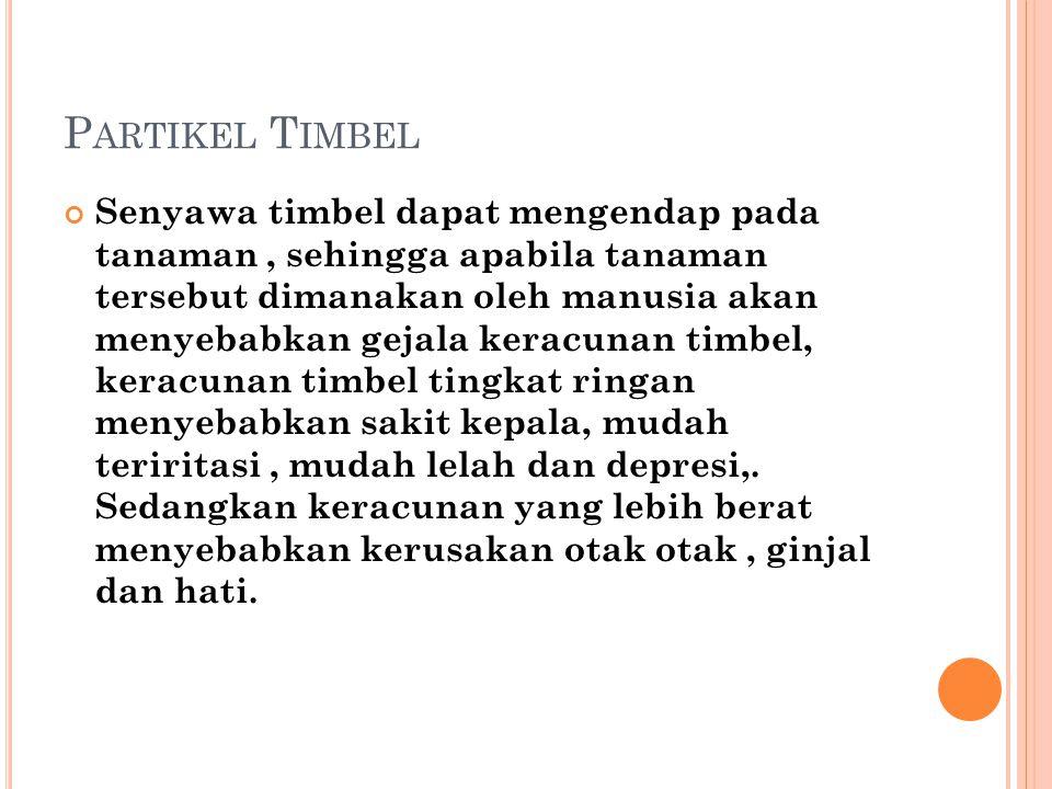 Partikel Timbel