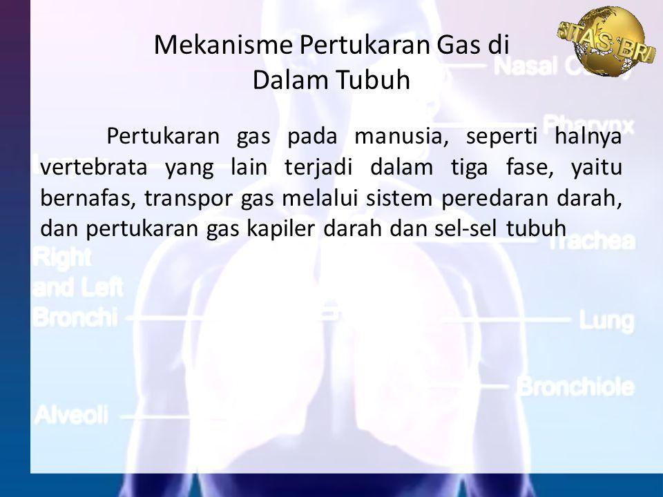 Mekanisme Pertukaran Gas di Dalam Tubuh
