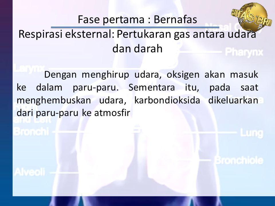 Fase pertama : Bernafas Respirasi eksternal: Pertukaran gas antara udara dan darah