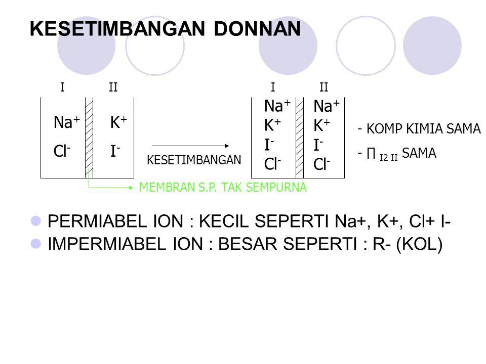 KESETIMBANGAN DONNAN PERMIABEL ION : KECIL SEPERTI Na+, K+, Cl+ I-