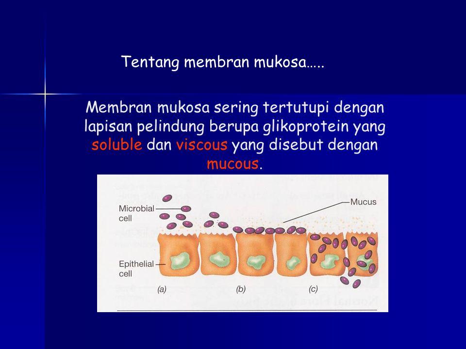 Membran mukosa sering tertutupi dengan lapisan pelindung berupa glikoprotein yang soluble dan viscous yang disebut dengan mucous.