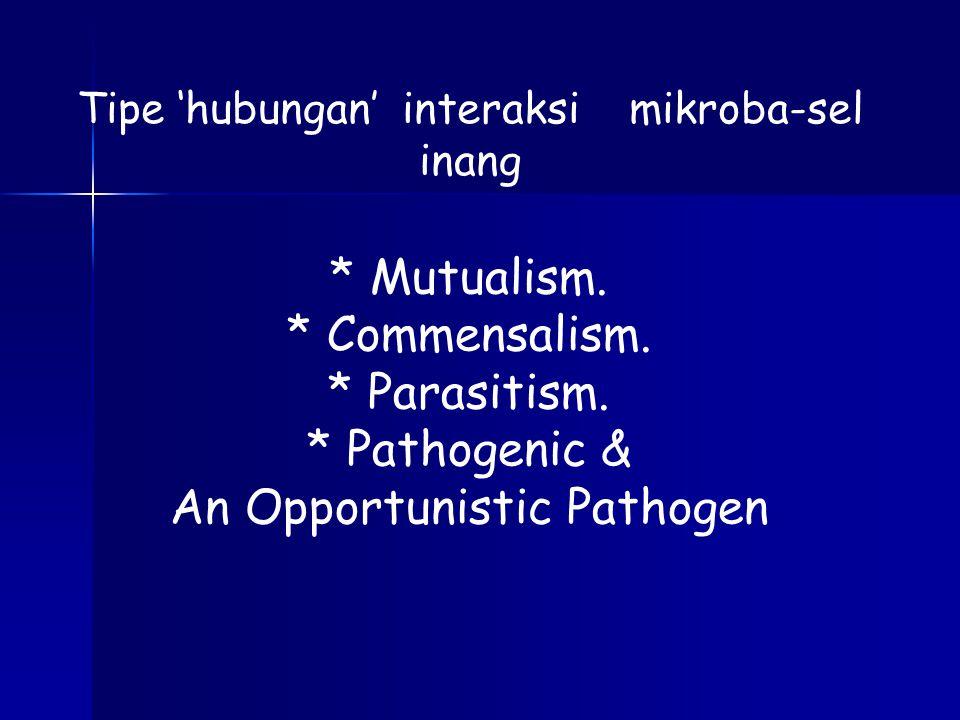 An Opportunistic Pathogen