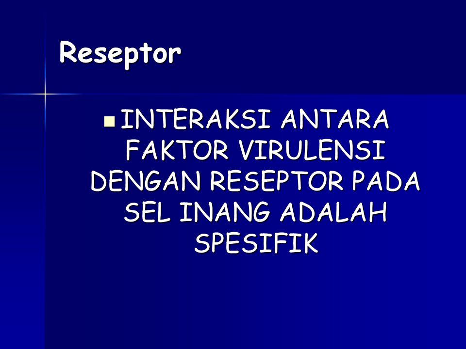 Reseptor INTERAKSI ANTARA FAKTOR VIRULENSI DENGAN RESEPTOR PADA SEL INANG ADALAH SPESIFIK