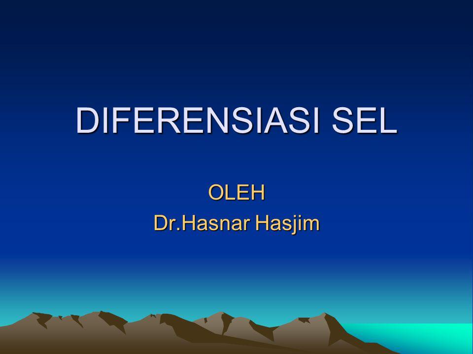 DIFERENSIASI SEL OLEH Dr.Hasnar Hasjim