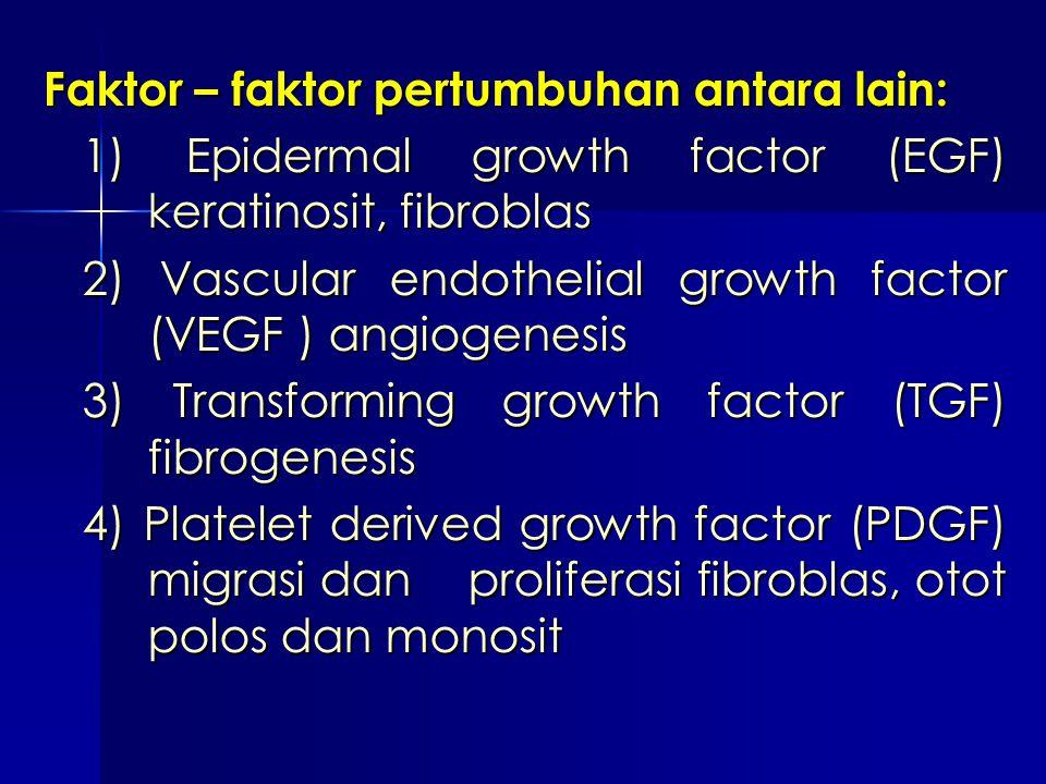 Faktor – faktor pertumbuhan antara lain: