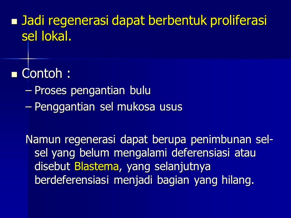 Jadi regenerasi dapat berbentuk proliferasi sel lokal.