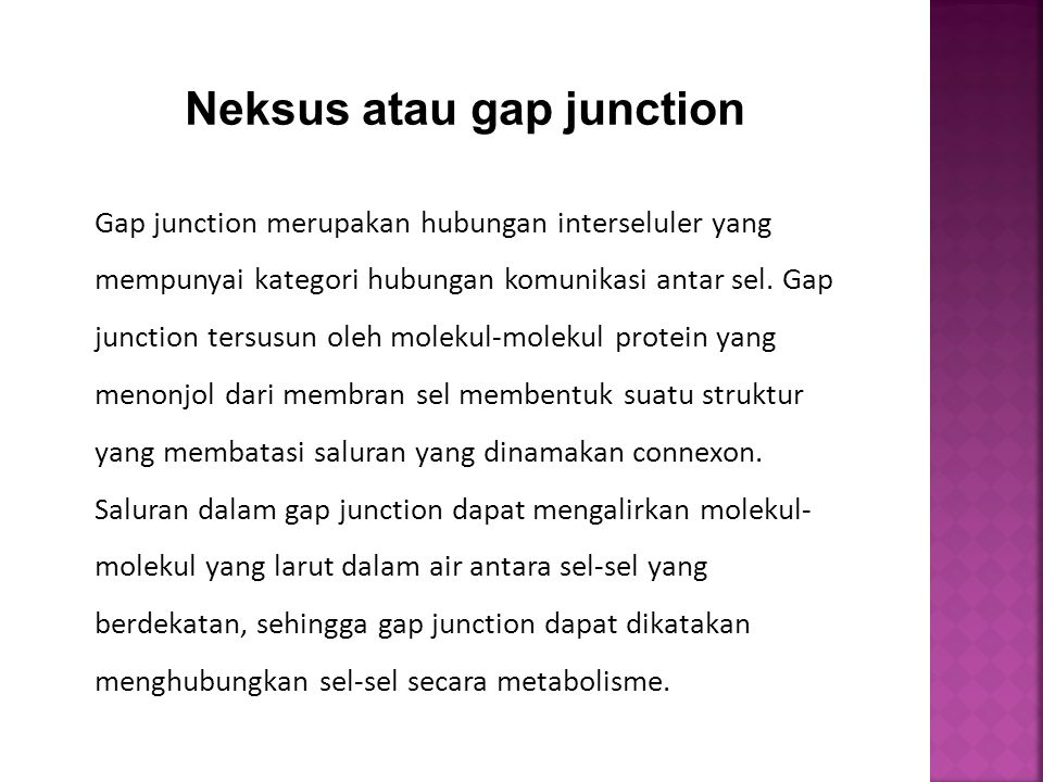 Neksus atau gap junction