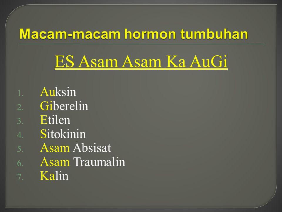 Macam-macam hormon tumbuhan