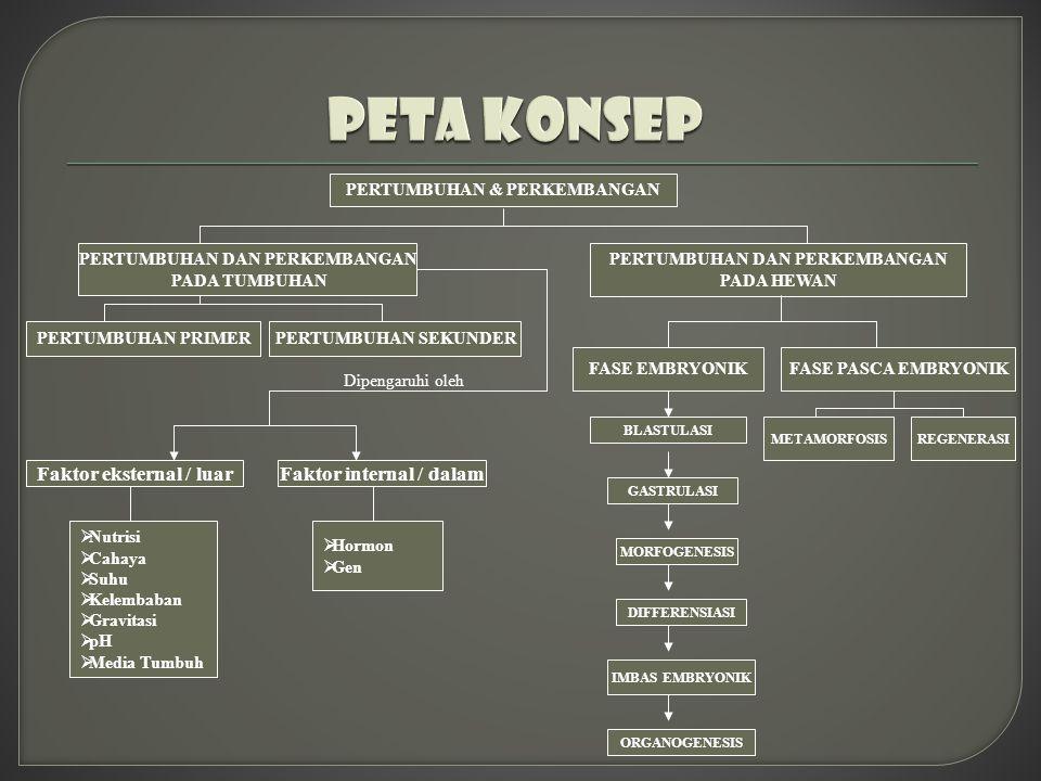 PETA KONSEP Faktor eksternal / luar Faktor internal / dalam
