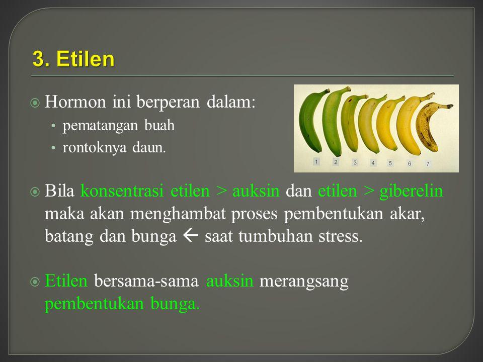3. Etilen Hormon ini berperan dalam: