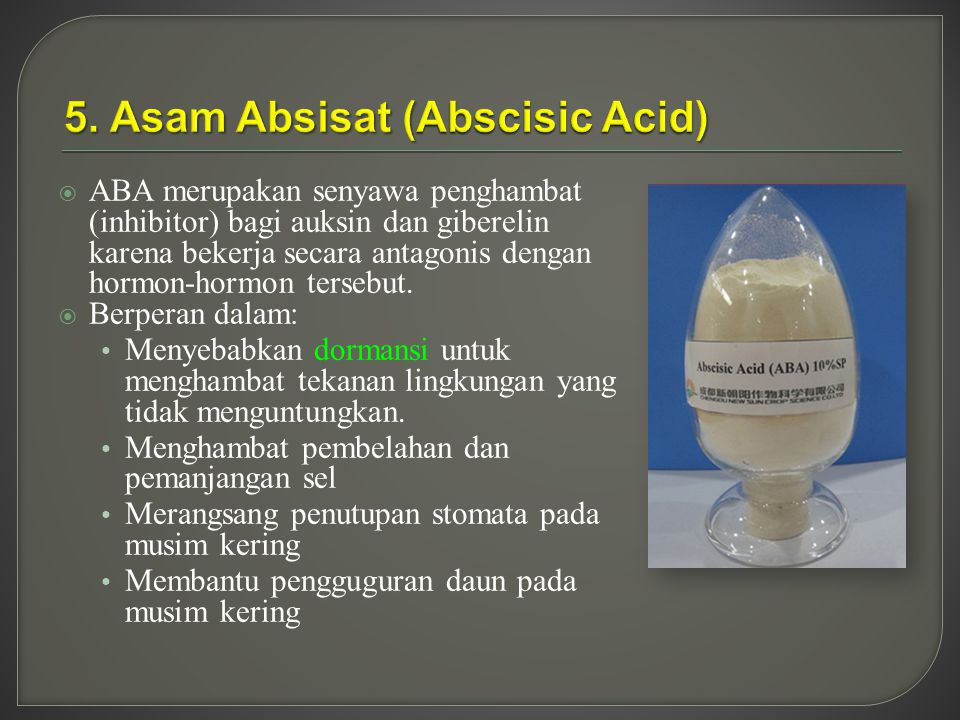 5. Asam Absisat (Abscisic Acid)