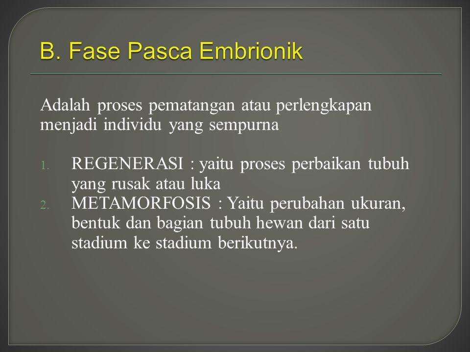 B. Fase Pasca Embrionik Adalah proses pematangan atau perlengkapan menjadi individu yang sempurna.