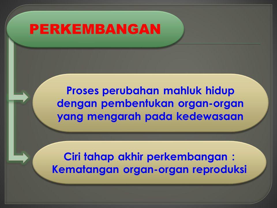 Ciri tahap akhir perkembangan : Kematangan organ-organ reproduksi