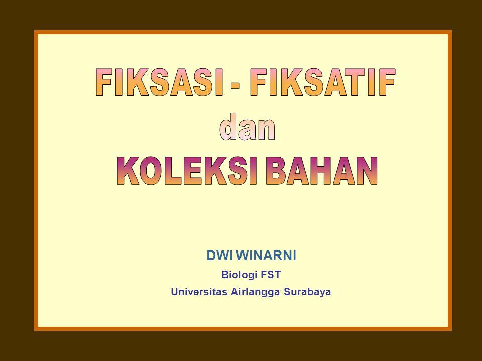 Universitas Airlangga Surabaya