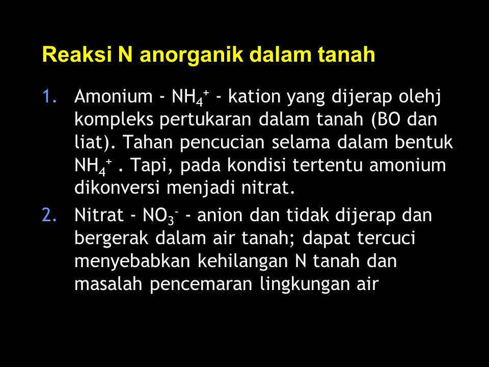 Reaksi N anorganik dalam tanah