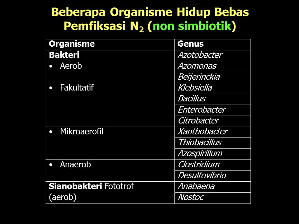 Beberapa Organisme Hidup Bebas Pemfiksasi N2 (non simbiotik)