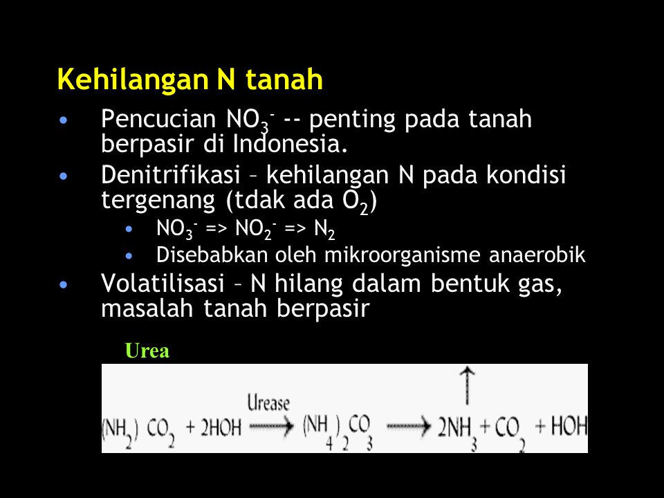 Kehilangan N tanah Pencucian NO3- -- penting pada tanah berpasir di Indonesia. Denitrifikasi – kehilangan N pada kondisi tergenang (tdak ada O2)