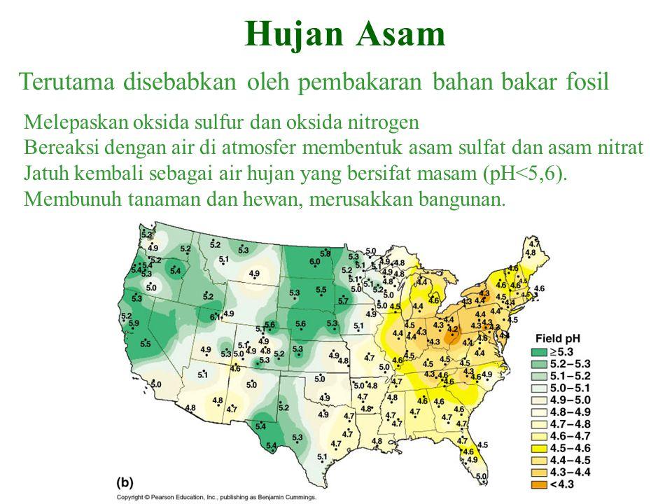 Hujan Asam Terutama disebabkan oleh pembakaran bahan bakar fosil