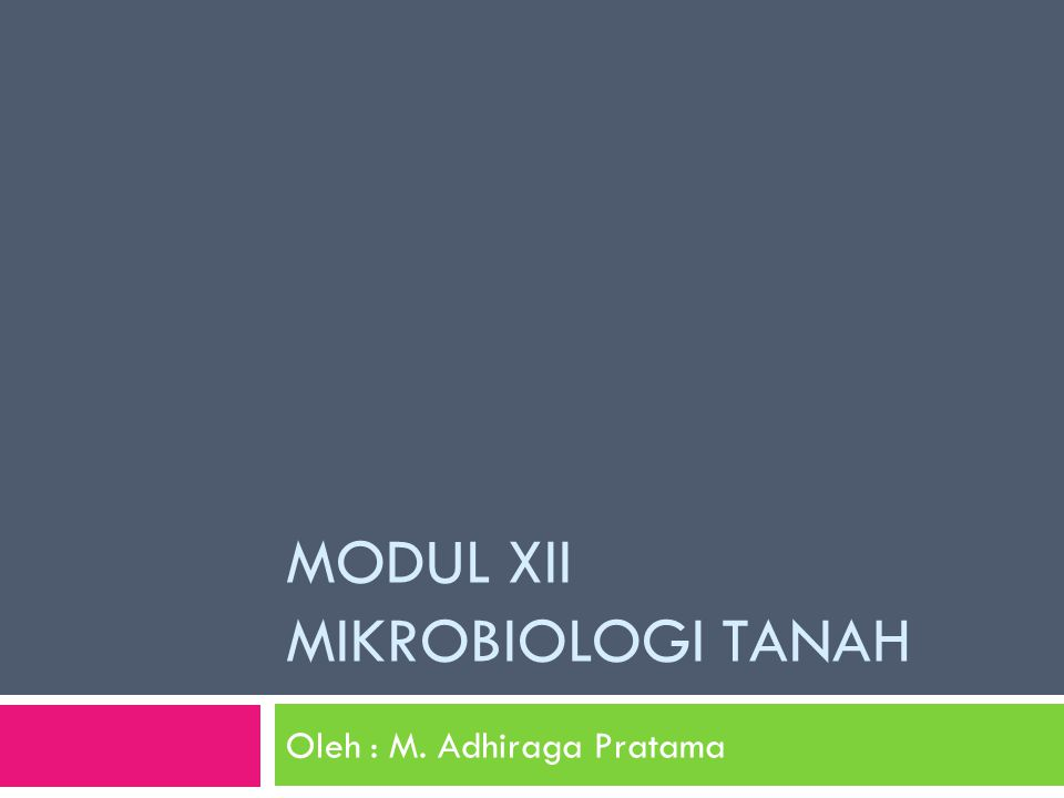 MODUL XII MIKROBIOLOGI TANAH