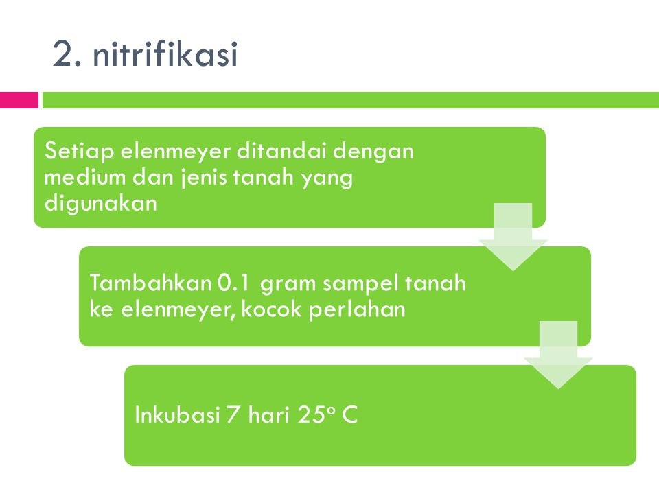 2. nitrifikasi Setiap elenmeyer ditandai dengan medium dan jenis tanah yang digunakan. Tambahkan 0.1 gram sampel tanah ke elenmeyer, kocok perlahan.