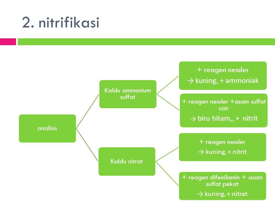 2. nitrifikasi + reagen nessler → kuning, + ammoniak analisis