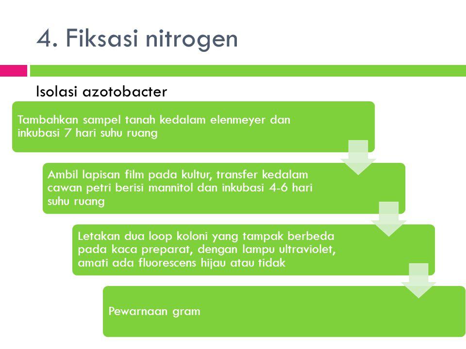 4. Fiksasi nitrogen Isolasi azotobacter