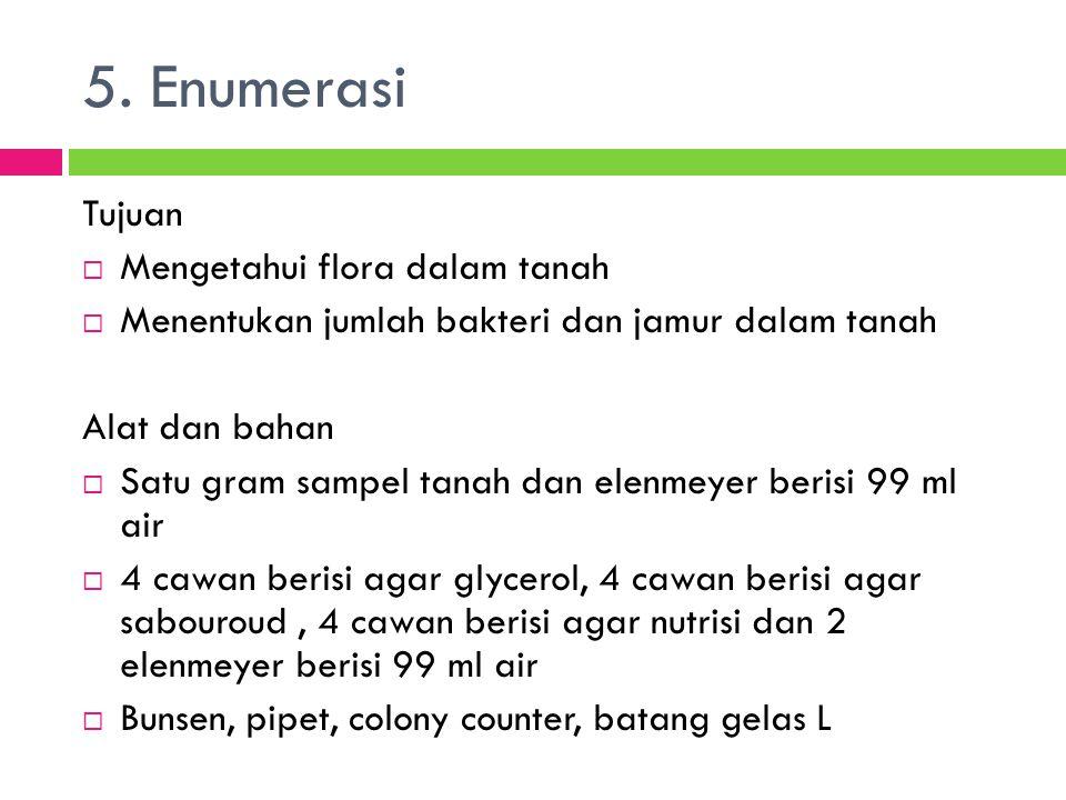 5. Enumerasi Tujuan Mengetahui flora dalam tanah