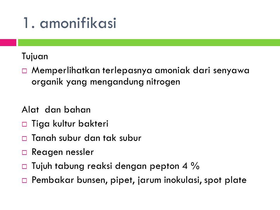 1. amonifikasi Tujuan. Memperlihatkan terlepasnya amoniak dari senyawa organik yang mengandung nitrogen.