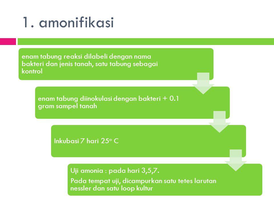 1. amonifikasi Uji amonia : pada hari 3,5,7.