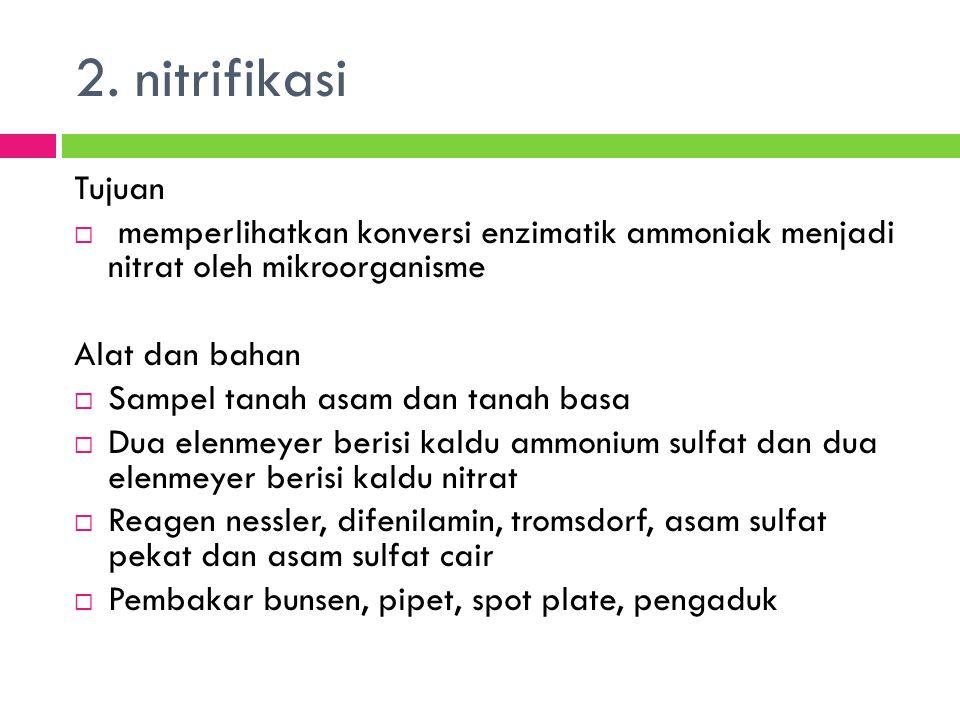 2. nitrifikasi Tujuan. memperlihatkan konversi enzimatik ammoniak menjadi nitrat oleh mikroorganisme.